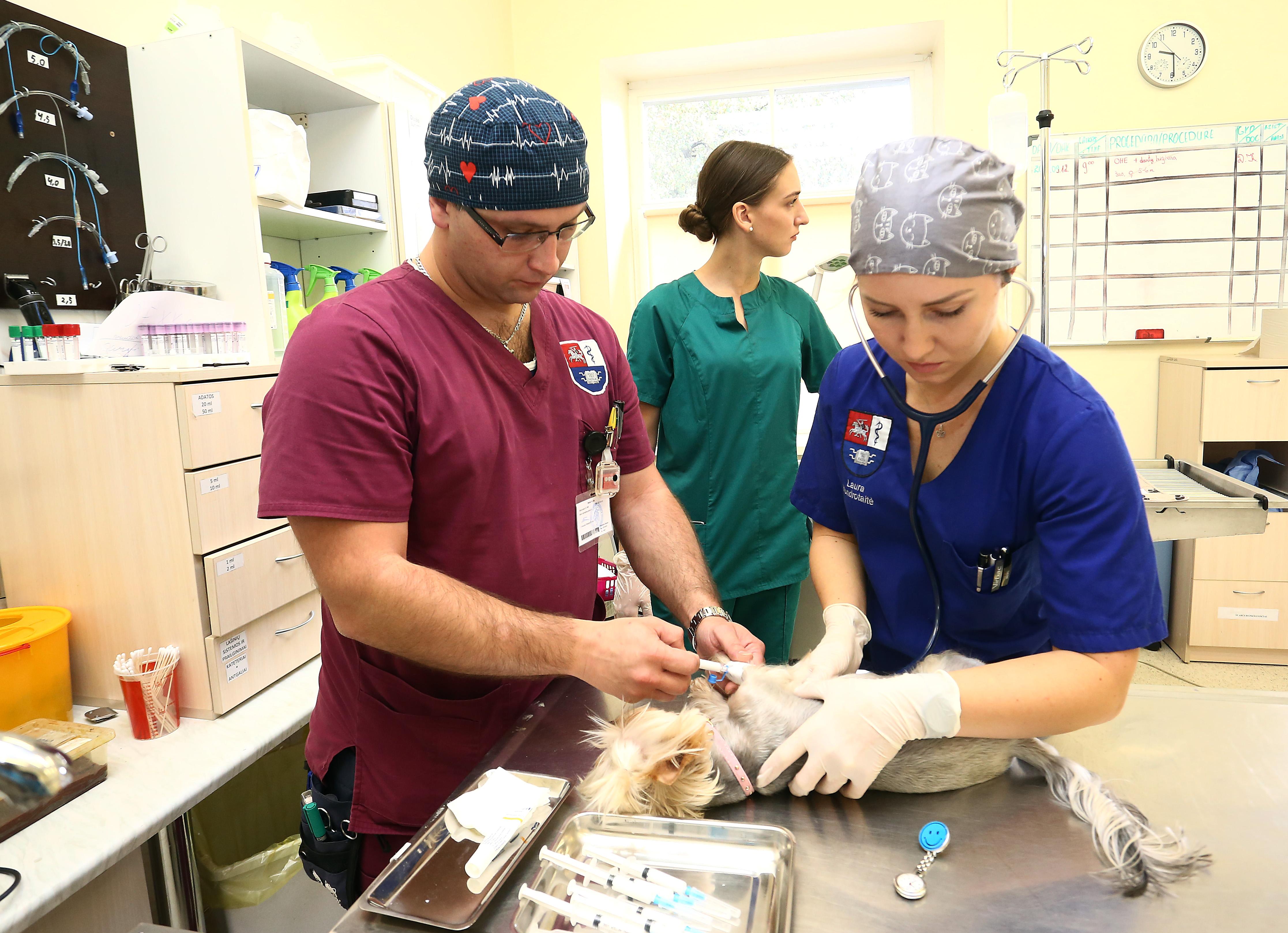 Kaune bus statoma didžiausia šalyje gyvūnų ligoninė