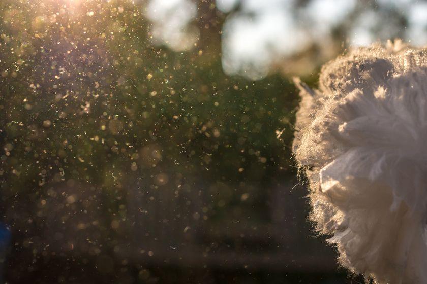3 mitai, kuriais žmonės vadovaujasi drėkindami ir valydami namų orą