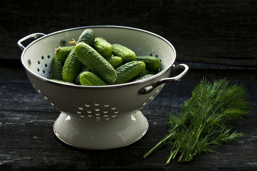 Pavasarį laukiami švieži agurkai – ne tik šaltibarščiams ar salotoms (+receptai)