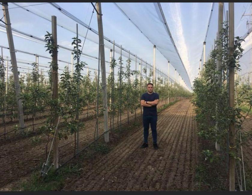 Obuoliai karaliauja ir žiemą: jų nauda organizmui ir patarimai, kokiomis sąlygomis juos laikyti